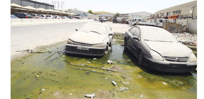 Cars gather dust and rust over a murky pool of water. PICTURE: Jayan Orma