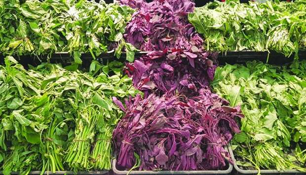 Green leafy vegetables and herbs at hypermarkets.