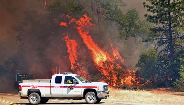 Flames engulf trees near a road during the Carr fire in Redding, California