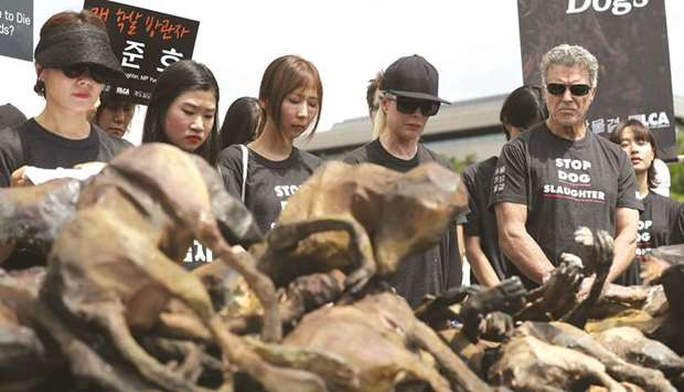 dog meat protesters