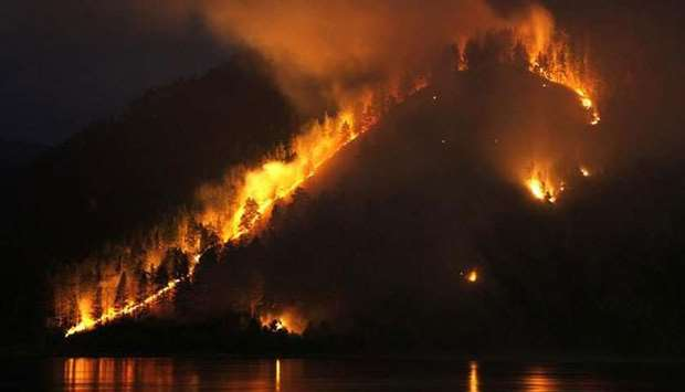 Dry grass, bushes and trees burn on the bank of the Yenisei