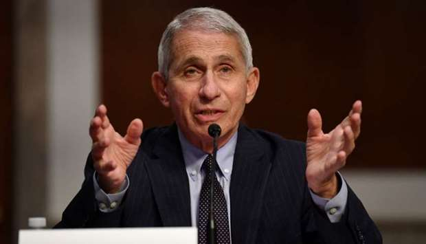 Dr Anthony Fauci, director of the National Institute for Allergy and Infectious Diseases, testifies