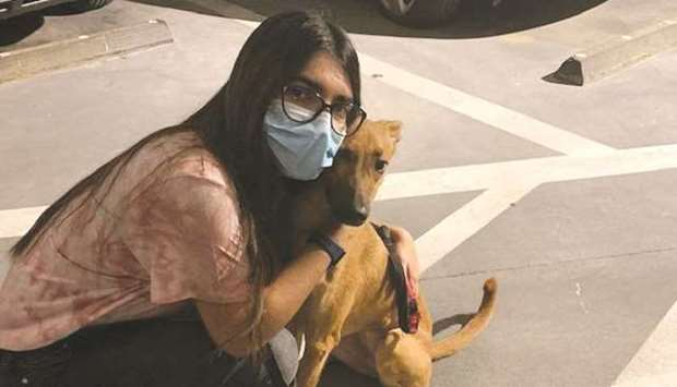 Anna Hayley Desouza managed to rehome two dogs in Seattle and is currently working on rehoming five