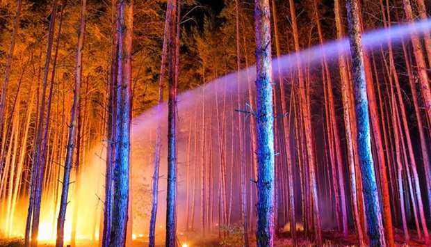 Fire brigades try to extinguish a burning forest on August 24, 2018 in Klausdorf, northeastern Germa