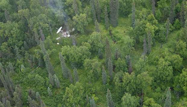 Small plane crashes in Swiss forest