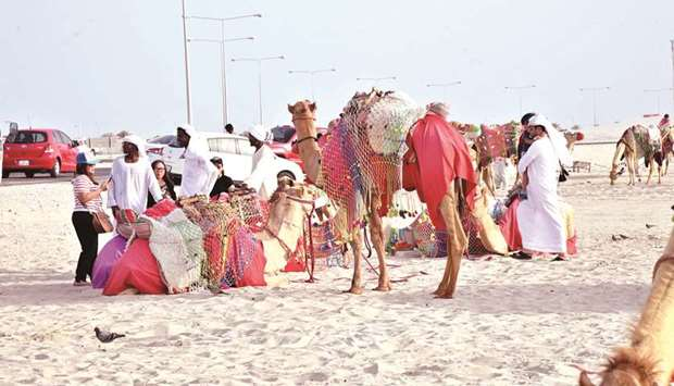 Camel rides are one of the attractions at the Sealine Beach.