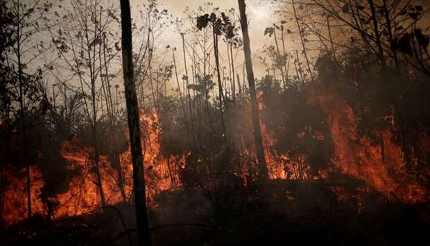A burning tract of Amazon jungle is seen while as it is being cleared by loggers and farmers in Port