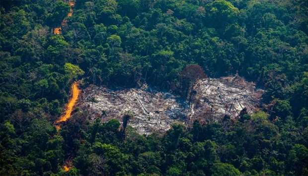 Aerial view of deforestation in the Menkragnoti Indigenous Territory in Altamira, Para state, Brazil