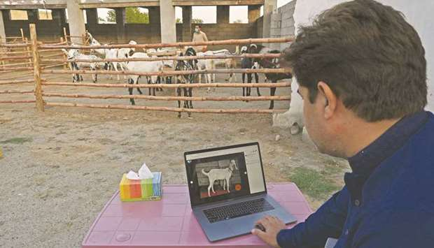 In this picture taken on July 22, Mohamed Naeem, who runs a website that sells goats online to custo