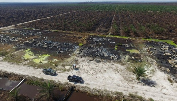 Aerial view shows the destruction caused by a forest fire at a palm oil plantation