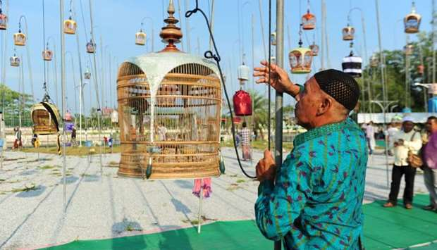 A participant hangs his bird on a cage