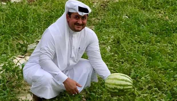 Nasser Ahmed al-Khalaf showing the watermelons in his farm near Al Khor.