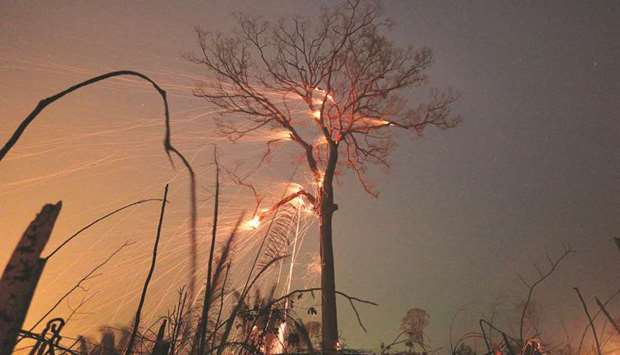 A tract of Amazon jungle burns as it is cleared by farmers in Rio Pardo, Rondonia, Brazil.