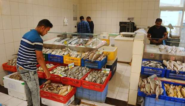 Further drop in fish prices expected by mid next month