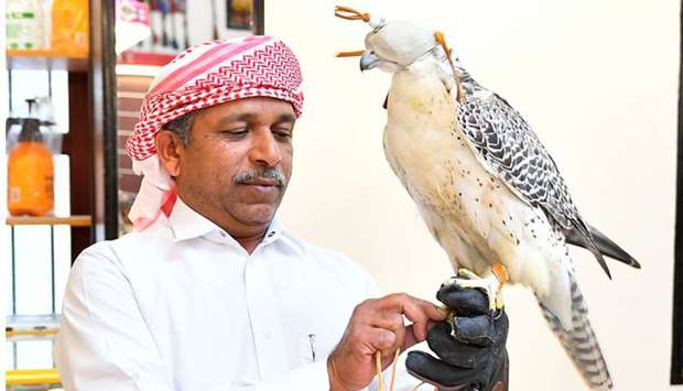 The Falcon Souq
