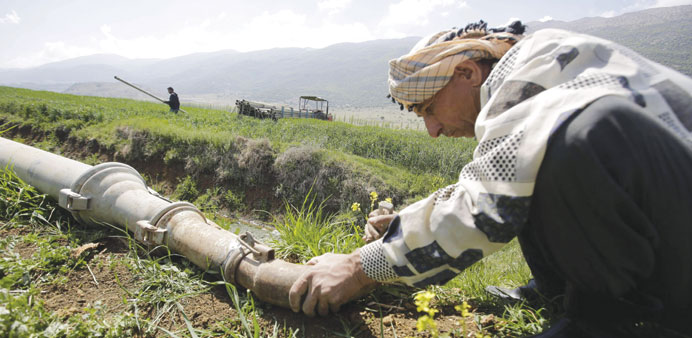 A farmer installs water tubes as he prepares to irrigate his malt field in the Ammiq wetland in the